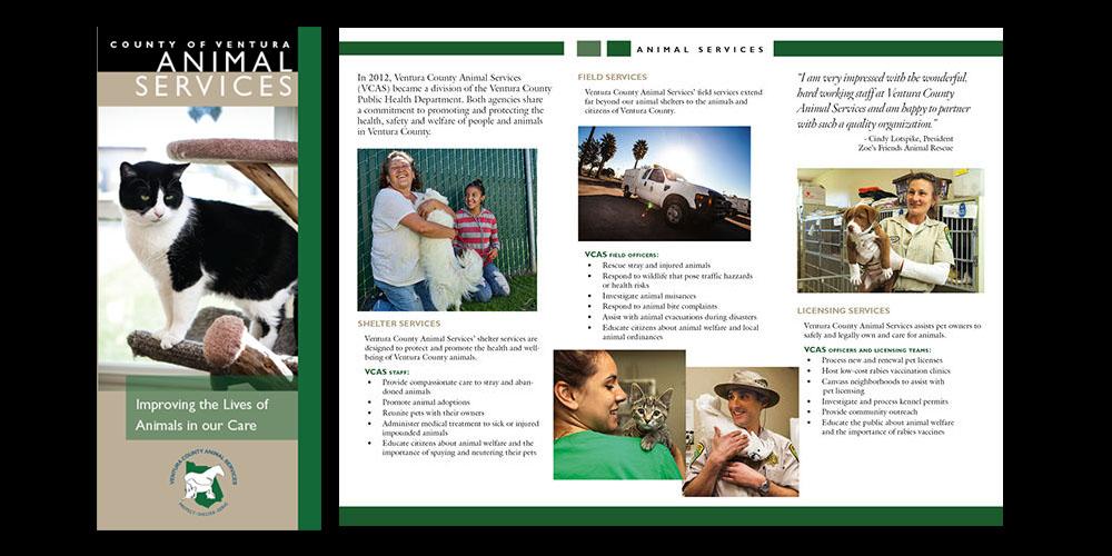 VCAS Animal Services brochure